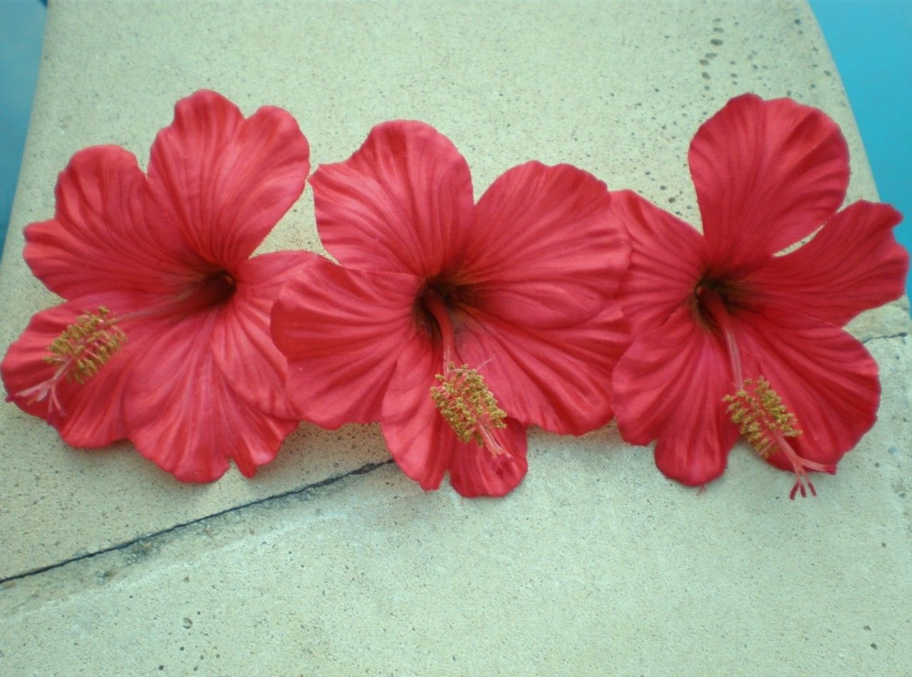Hawaiian Hibiscus 3 Red Floating Artificial Flowers Wedding Home